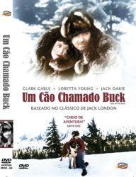 DVD UM CAO CHAMADO BUCK - CLARK GABLE