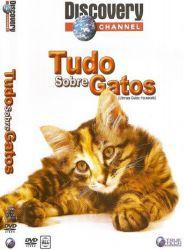 DVD TUDO SOBRE GATOS
