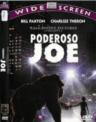 DVD PODEROSO JOE