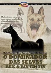 DVD O DOMINADOR DAS SELVAS -1934