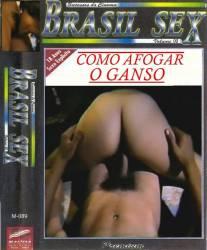 DVD COMO AFOGAR O GANSO - PORNOCHANCHADA - 1981