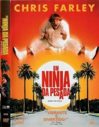 DVD UM NINJA DA PESADA