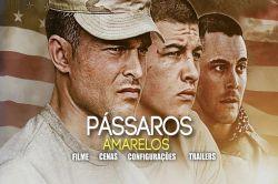 DVD PASSAROS AMARELOS - ALDEN EHRENREICH