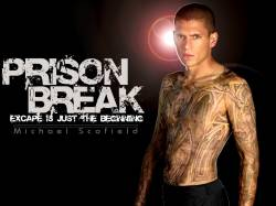 DVD PRISON BREAK - COMPLETA - 22 DVDs